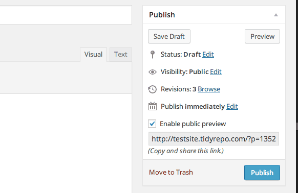 Public Post Preview plugin publish button