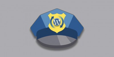 Choosing WordPress Security Plugins Wisely