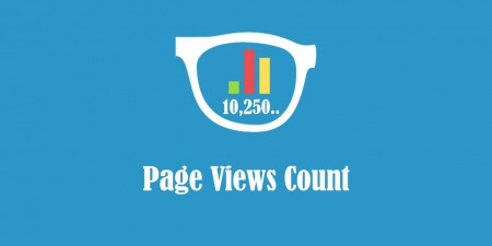 Page Views Count