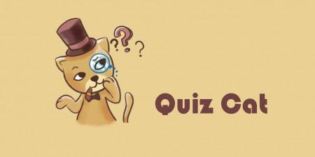 The Quiz Cat