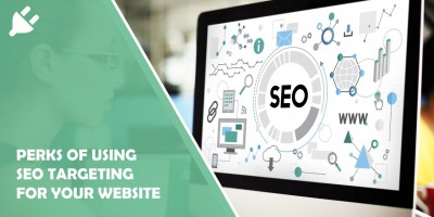 5 Perks of Using Seo Targeting for Your Website
